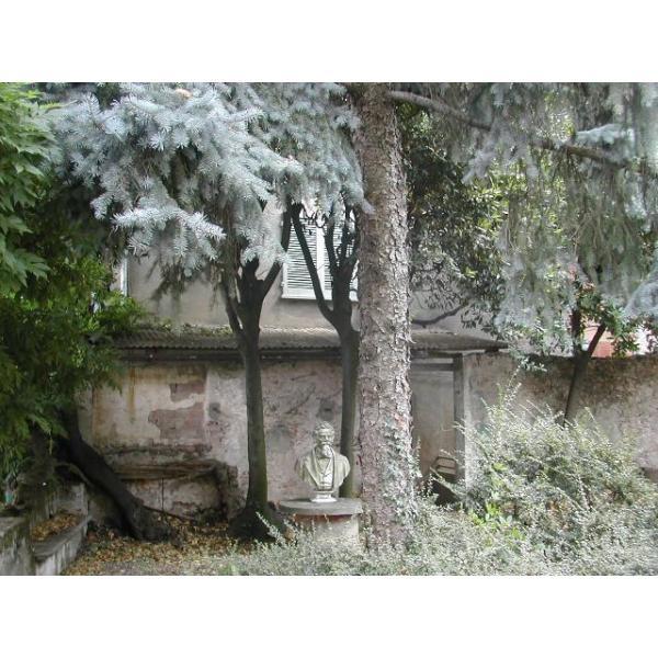 CASA PROVINCIA NOVARA - vicinanze in Borgoma